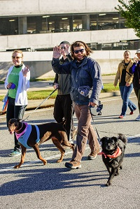 Brian Barnes Bacon and Riley Walk 200p.jpg